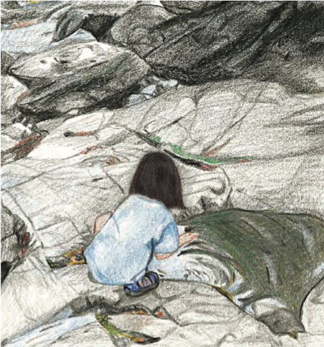 sketch of child looking into tidepool