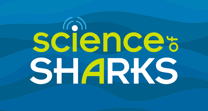 science of sharks logo