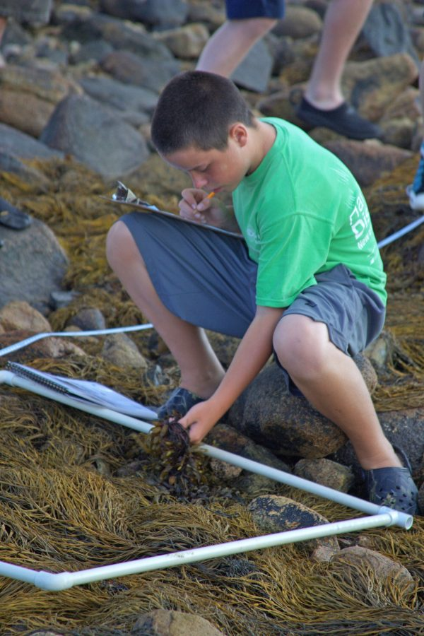 teen studies living organisms along water