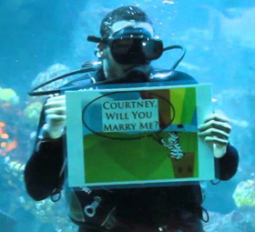 Diver holding a wedding proposal