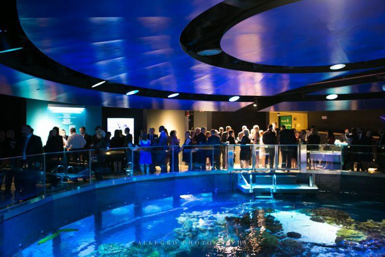 private event venue above giant ocean tank