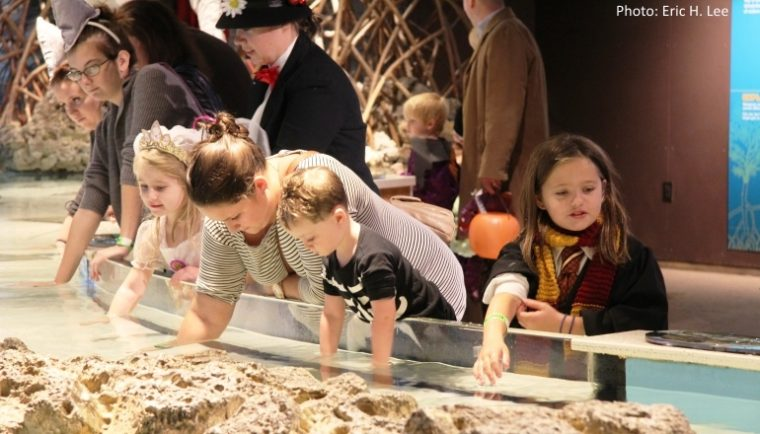 Children exploring tank