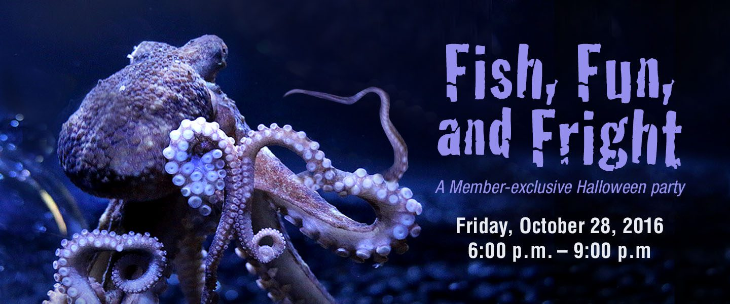 invitation to Fish, Fun, and Fright, with image of octopus