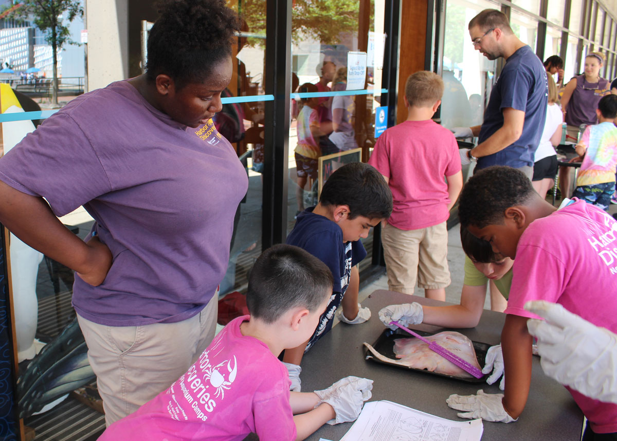 teen counselor helps younger campers on dissection project