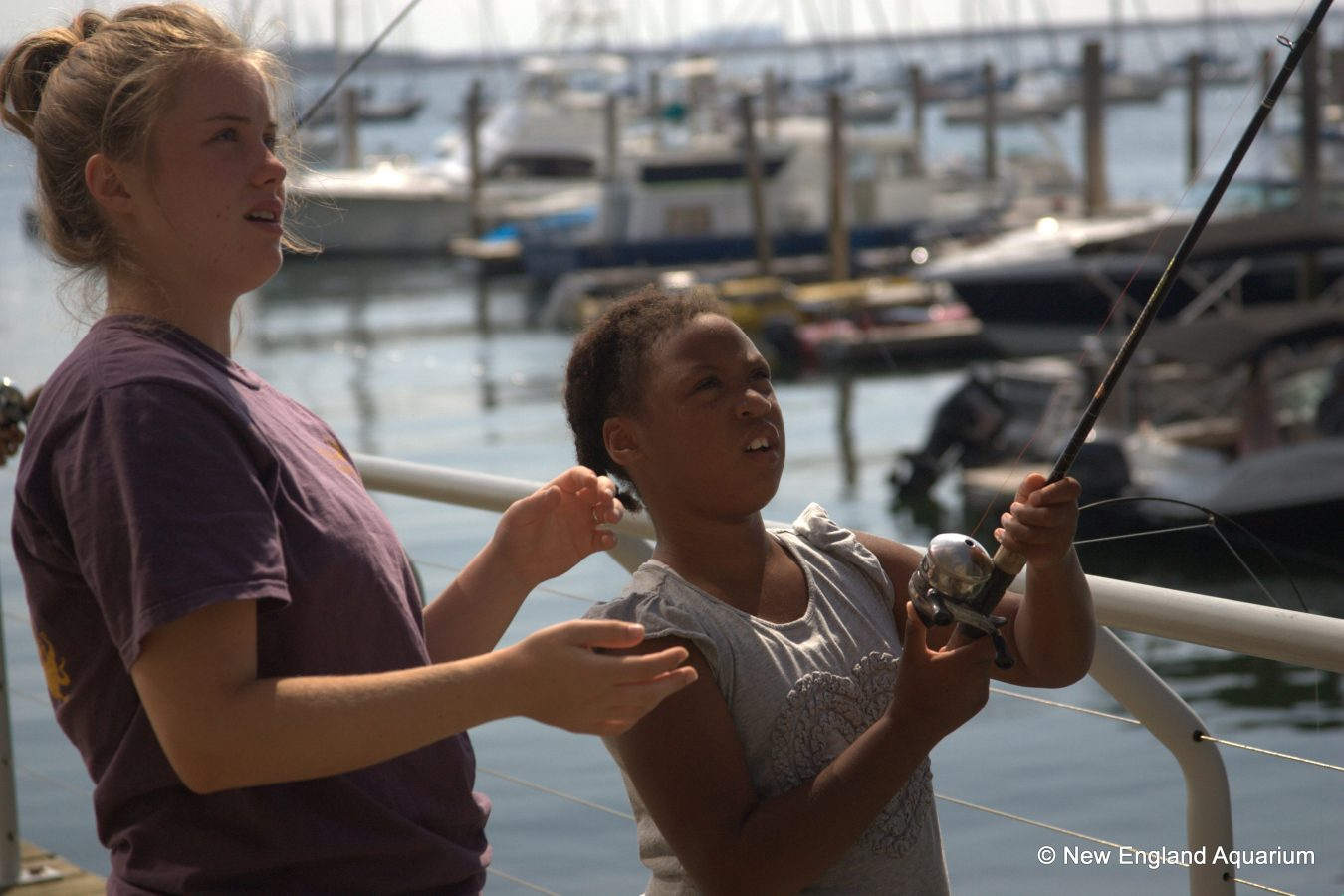 harbor discoveries camp offers Fishellaneous