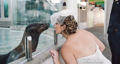 bride kissing seal through glass