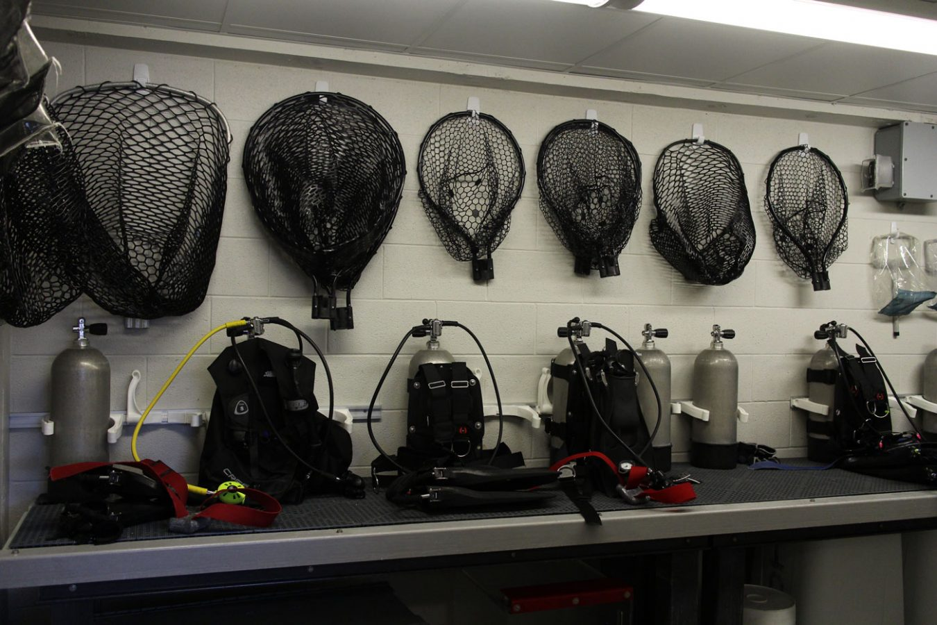 nets and diver gear in divers' splash room