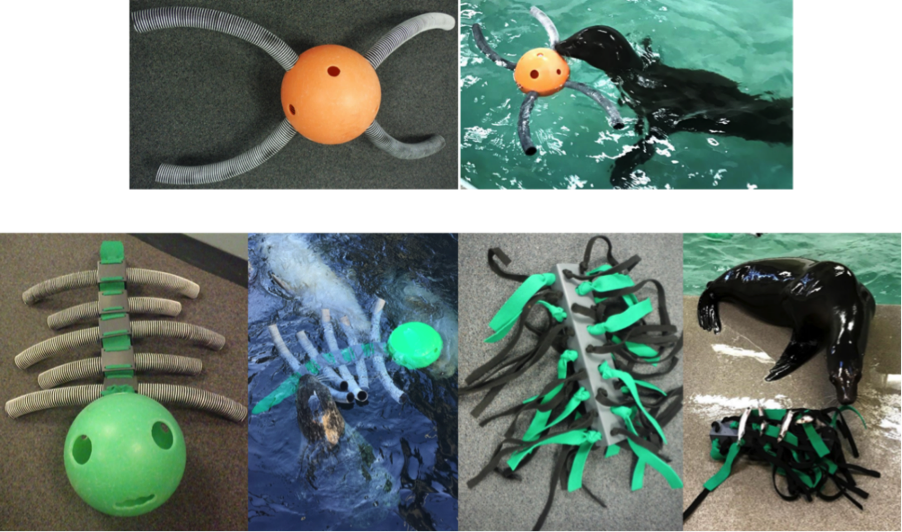 toys created for marine mammals