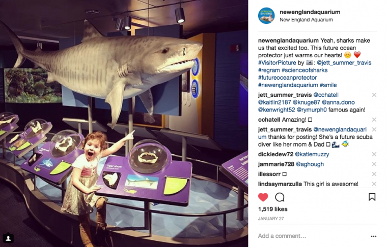 instagram awesome girl with shark