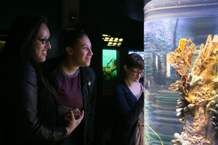 The Tide members look at an exhibit