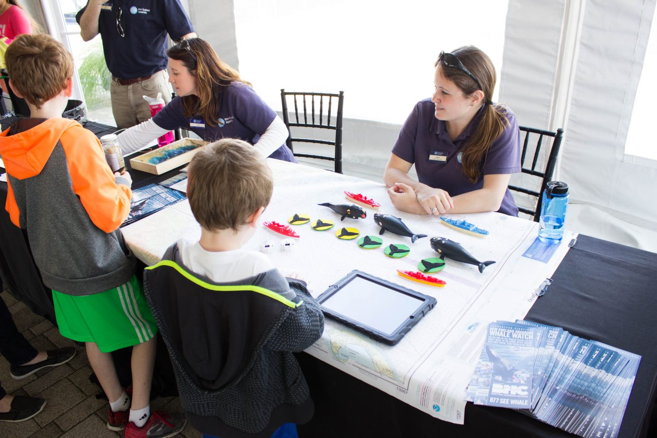 Visitors learn about the North Atlantic right whales during the 2017 New England Right Whale festival.