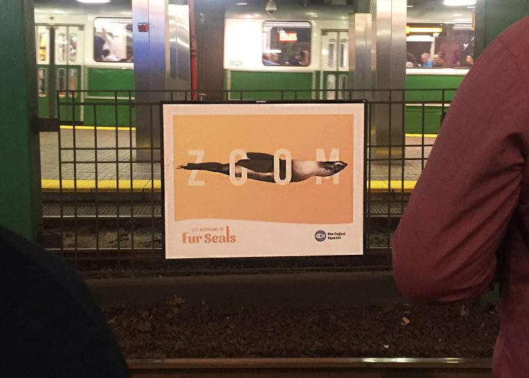 ad at Park Street T station