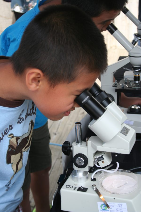 A World Oceans Day 2018 visitor looks through a microscope.