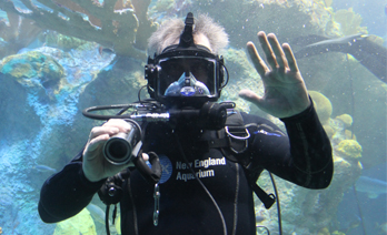 Diver waves out of Giant Ocean tank