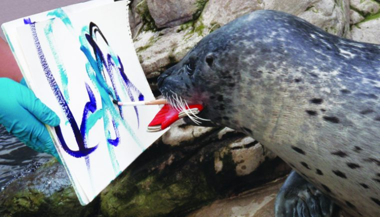 Seal paints on canvas