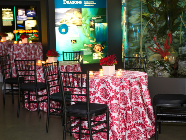 Cocktail tables set up in the main exhibit gallery for an event