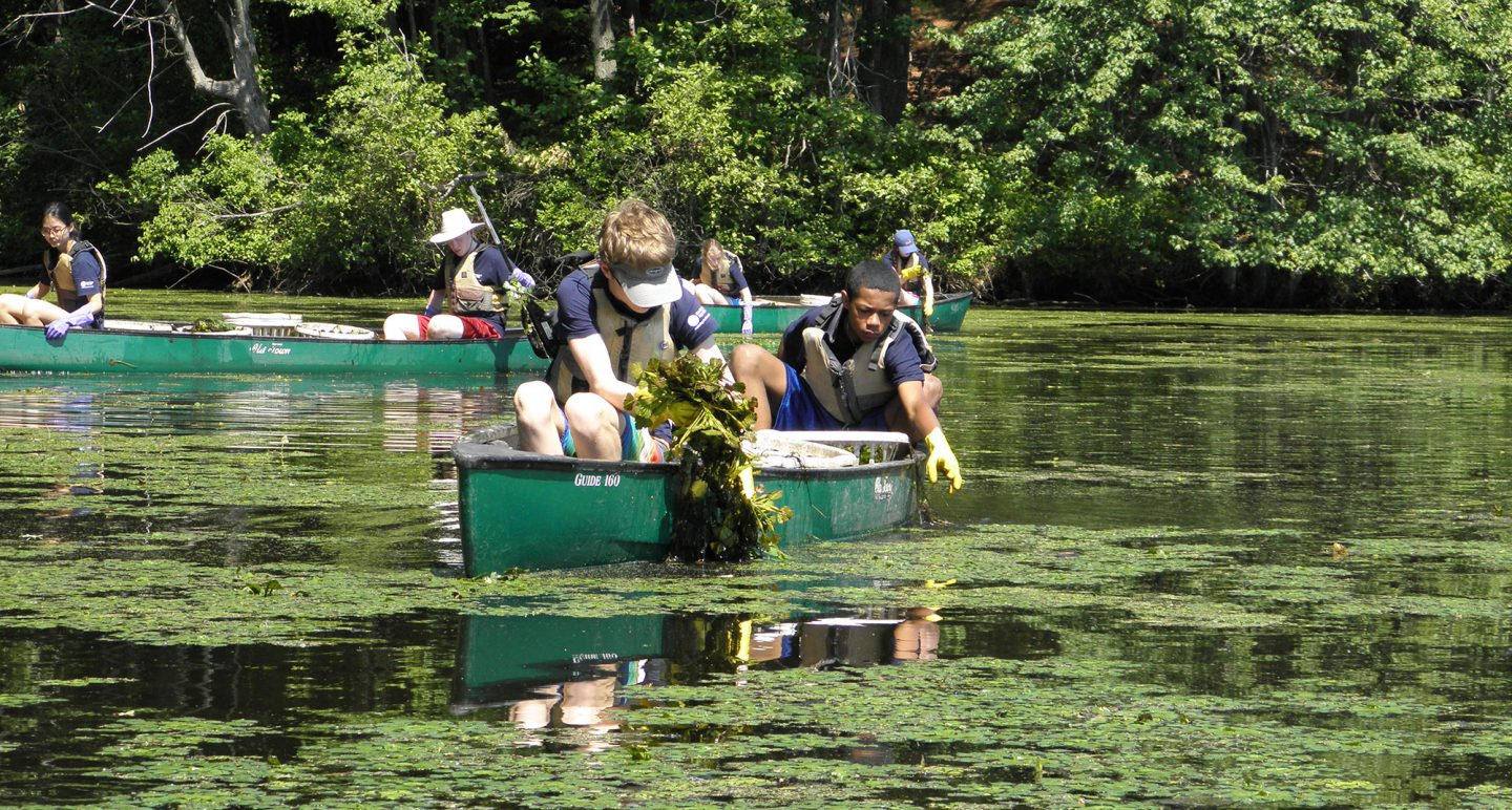 teens in canoe gather invasive weeds