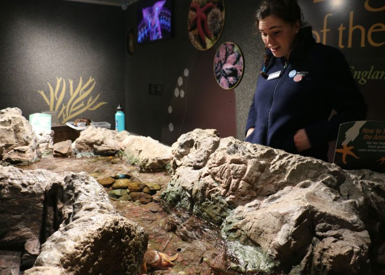 educator looking at jar with clams and sea stars