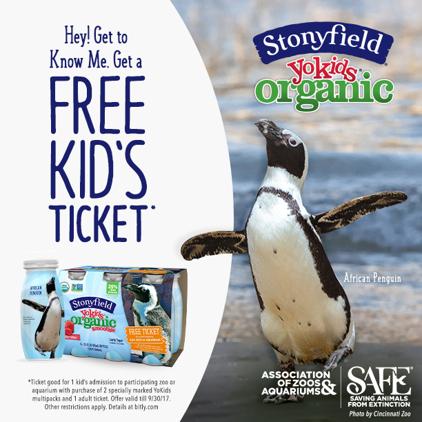 stonyfield yogurt promotion with penguin