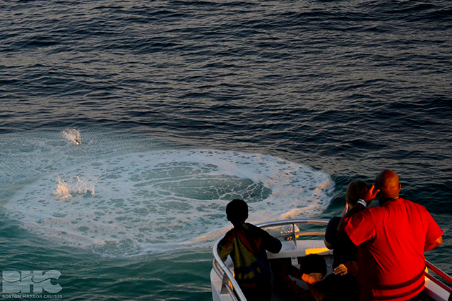 passengers watch a boil of bubbles at the surface