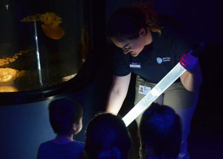 educator present jelly tube to young visitors