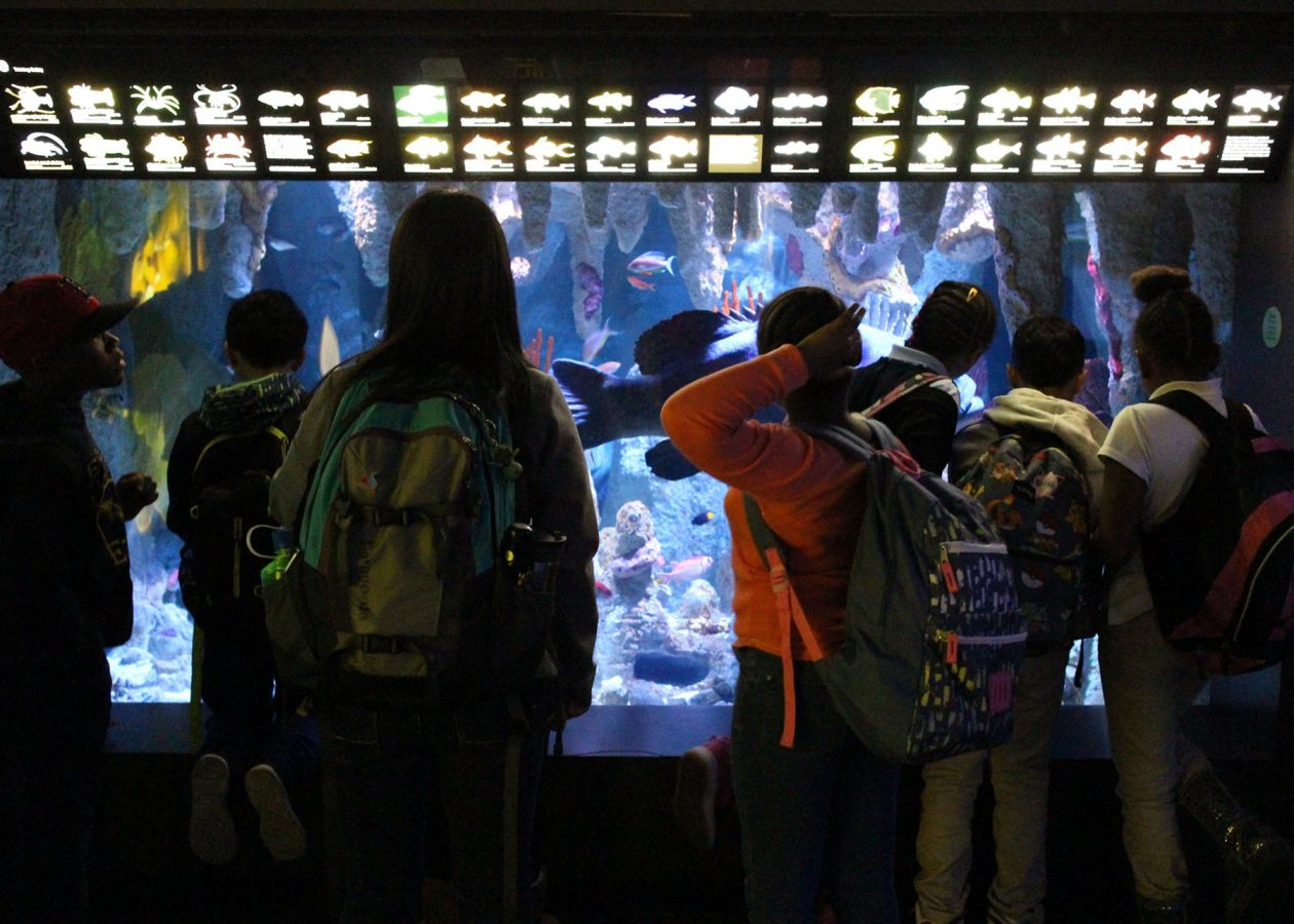 visitors look at blue hole exhibit
