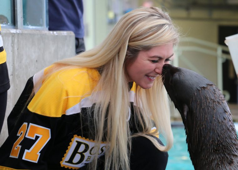 boston blades players meet fur seal