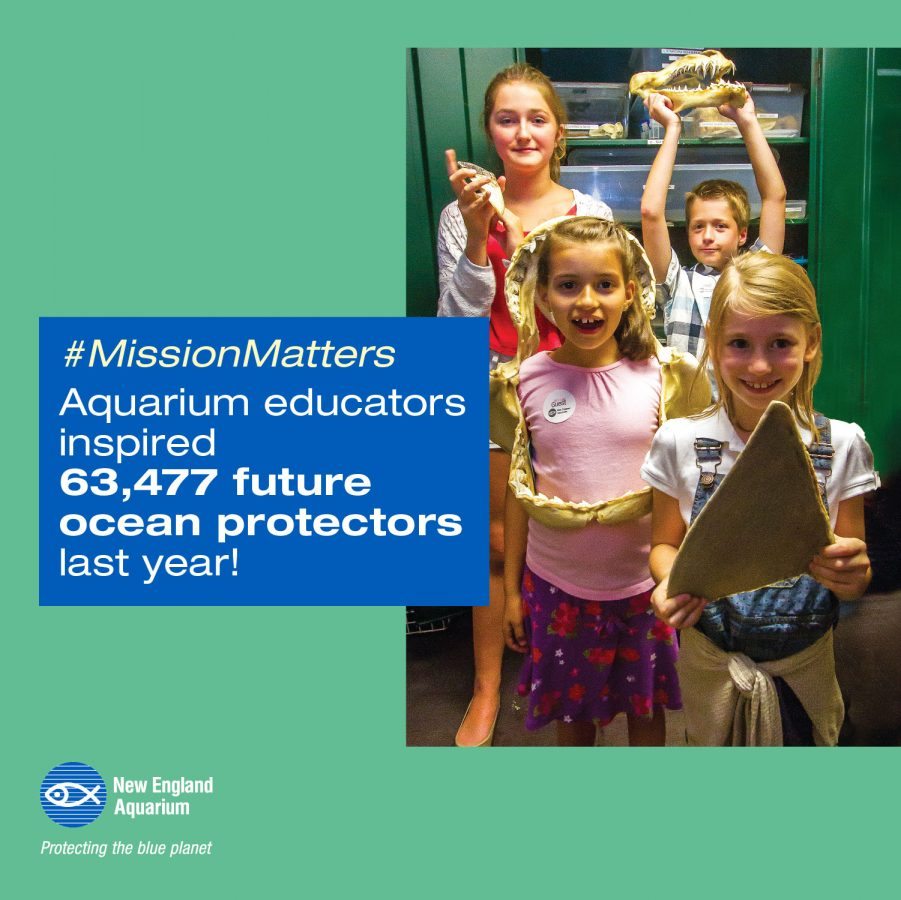 infographic: aquarium educators inspired 63,4777 future ocean protectors last year