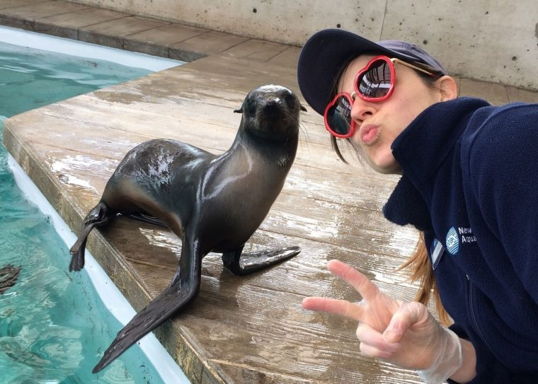 trainer wearing heart-shaped glasses next to fur seal