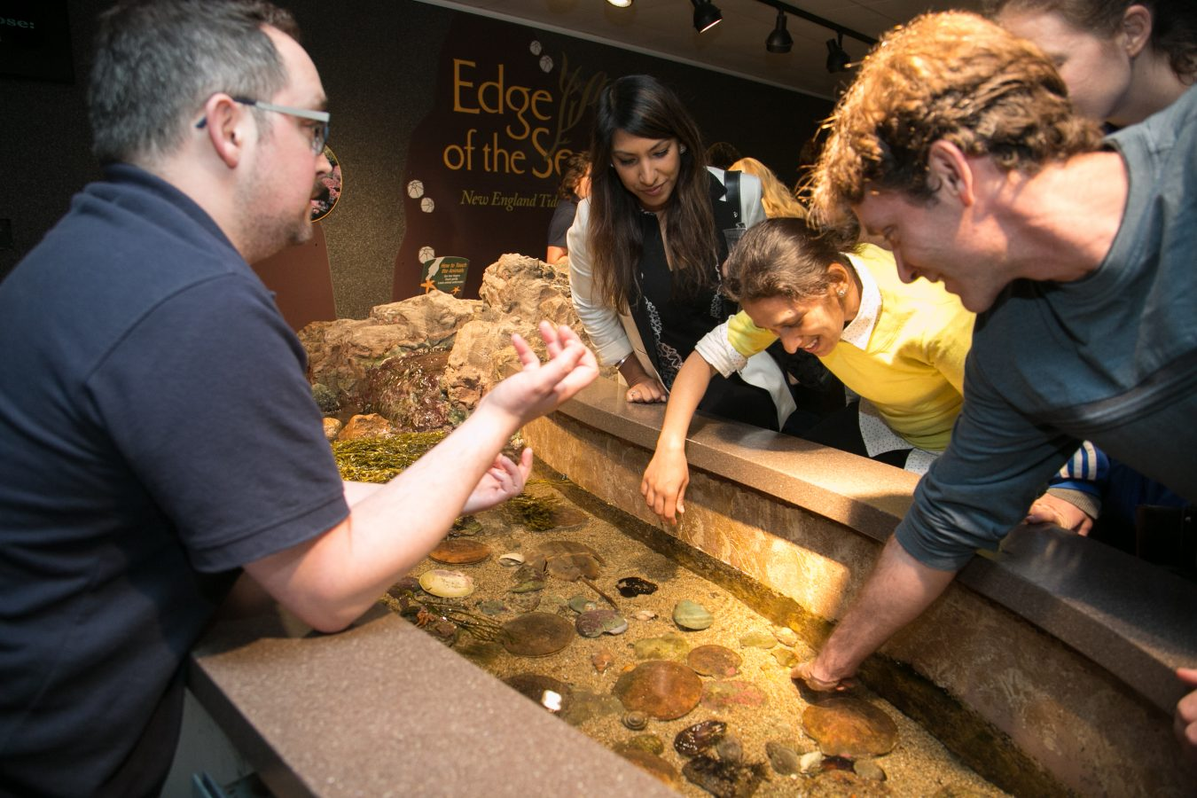 Members of The Tide get their hands wet in the Edge of the Sea Touch Tank