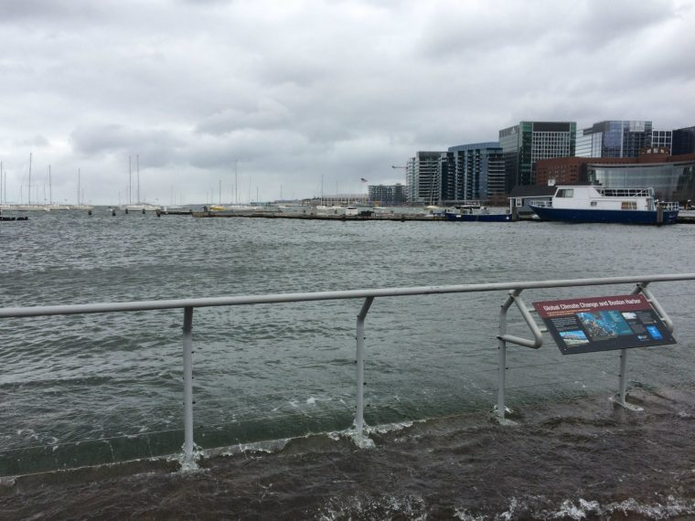 boston harbor flooding