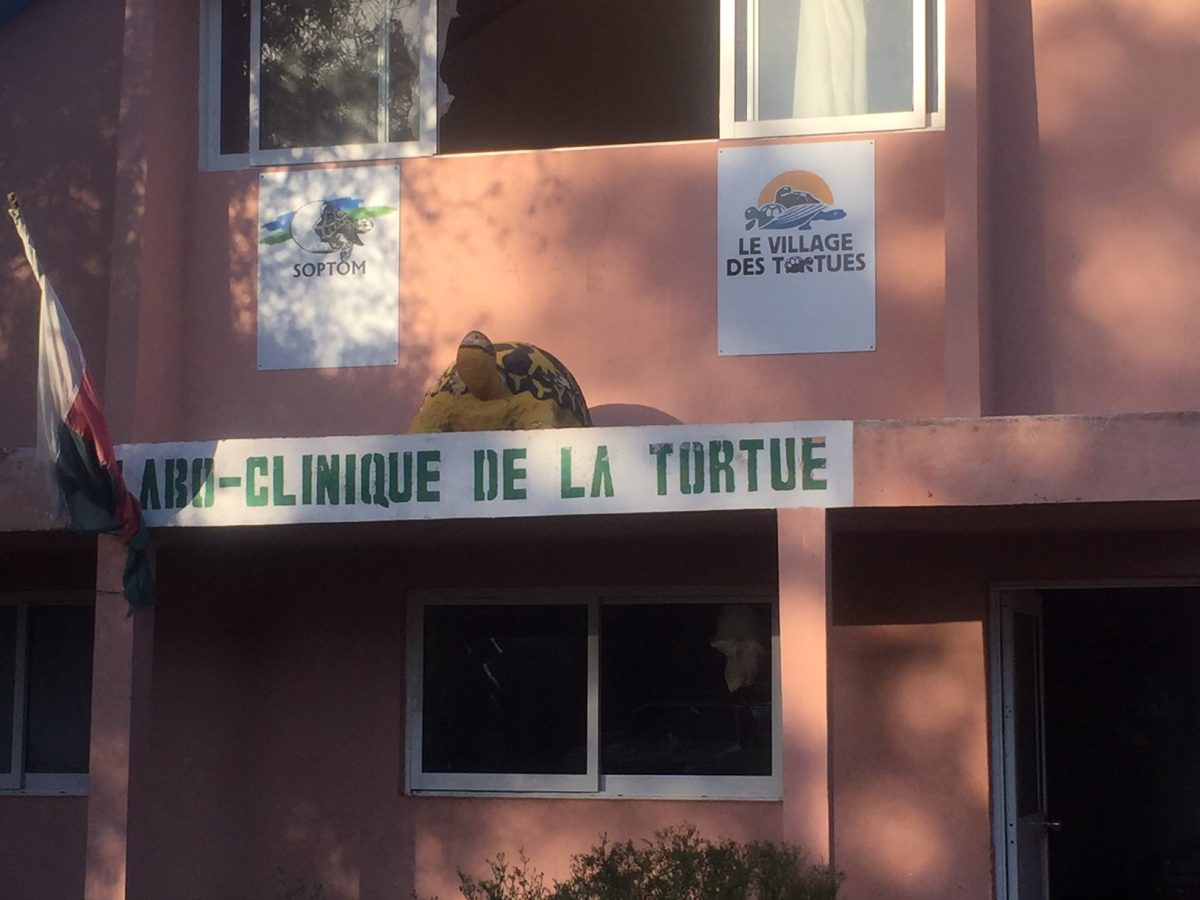 Front of clinic where turtles being treated