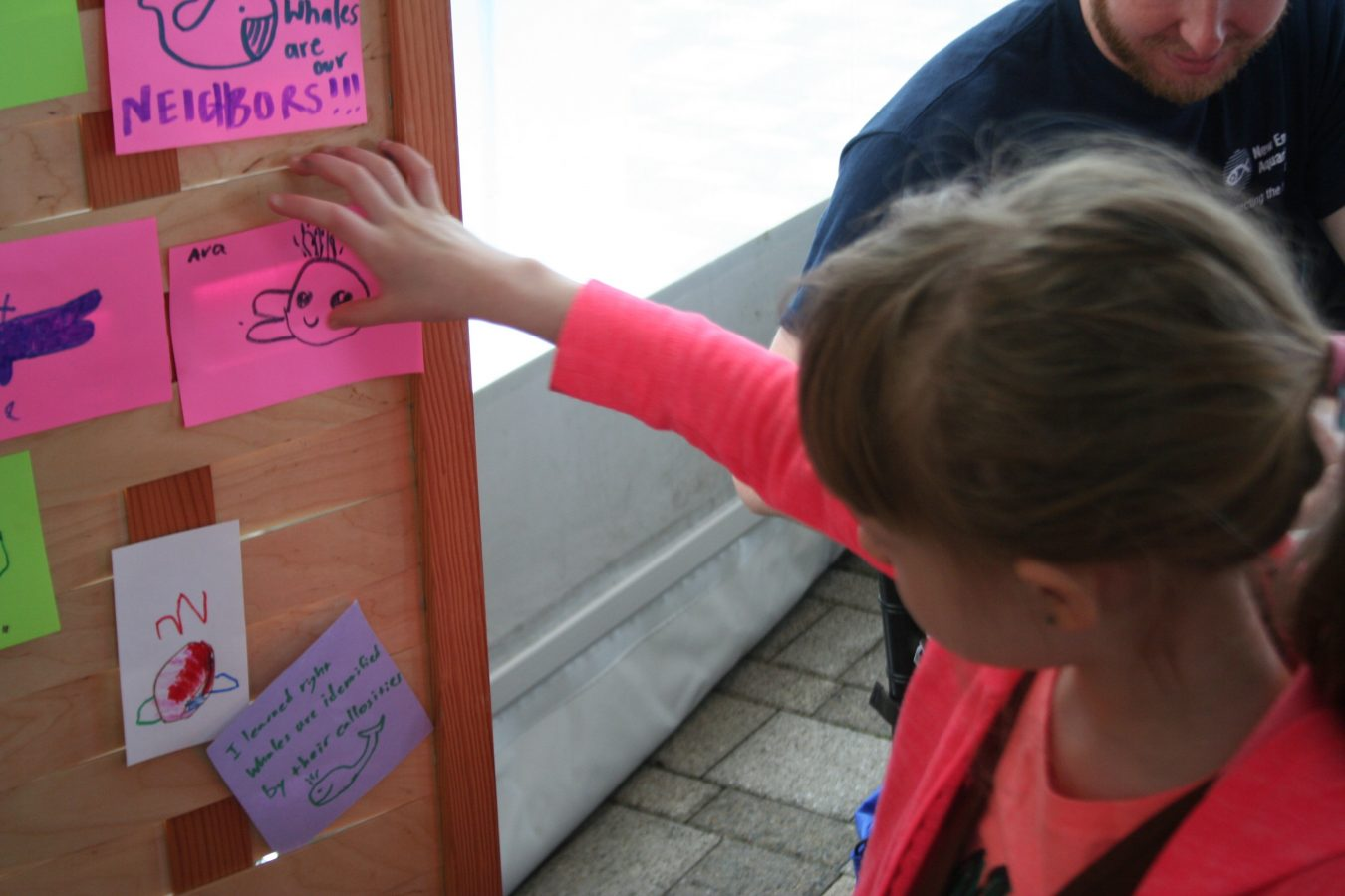 A girl posts her drawing at the New England Right Whale Festival on May 6, 2018.