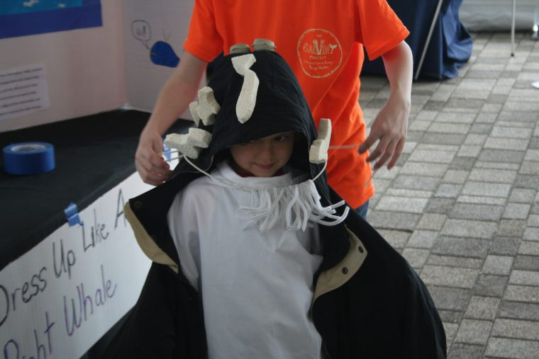A child dresses up as a North Atlantic right whale at the New England Right Whale Festival on May 6, 2018.