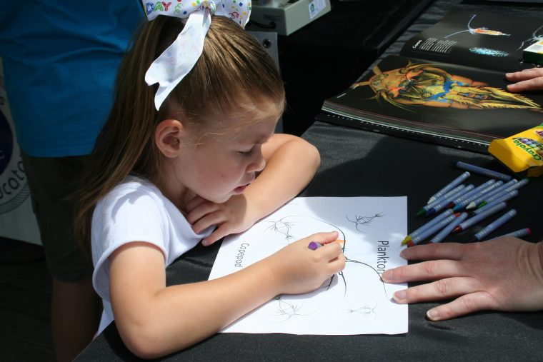 A World Oceans Day 2018 visitor draws a picture.