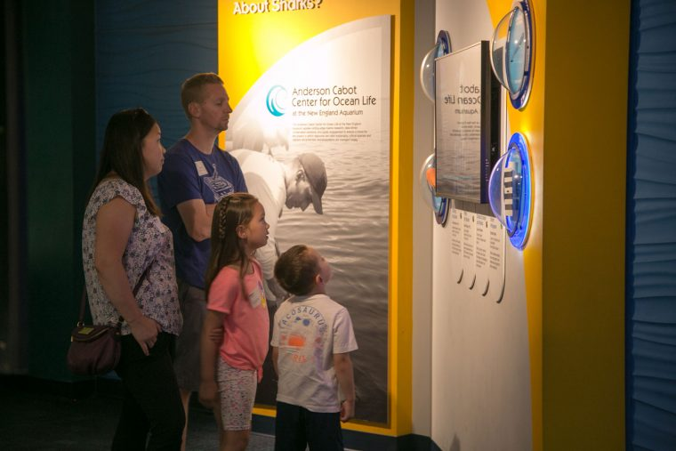 family learns about shark research in exhibit