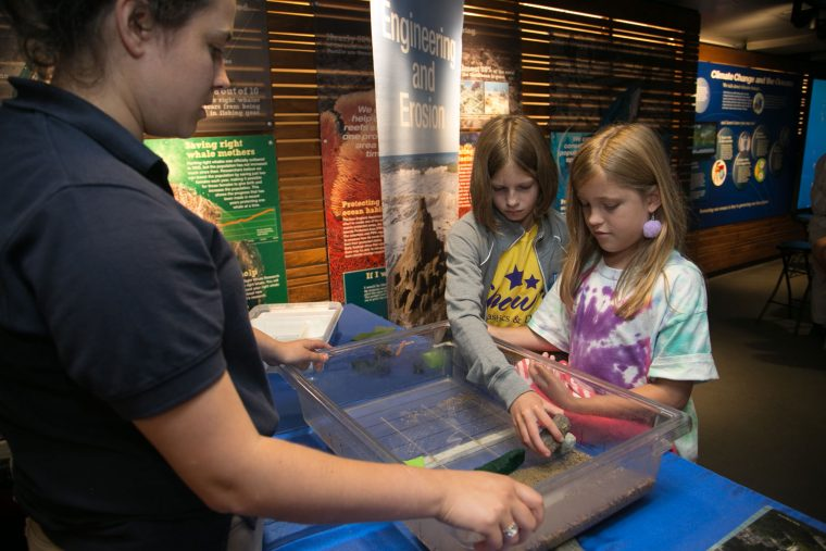 children learn from aquarium educator