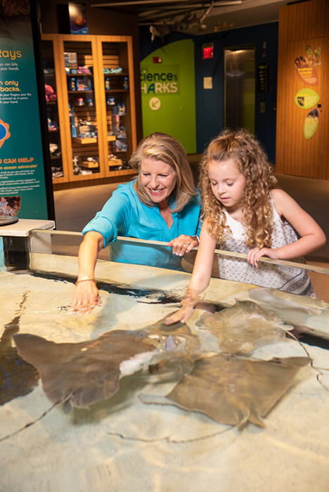 vikki and child at touch tank