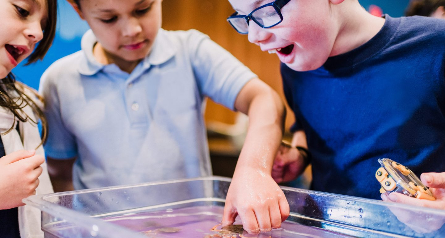 kids participating in aquarium education classes