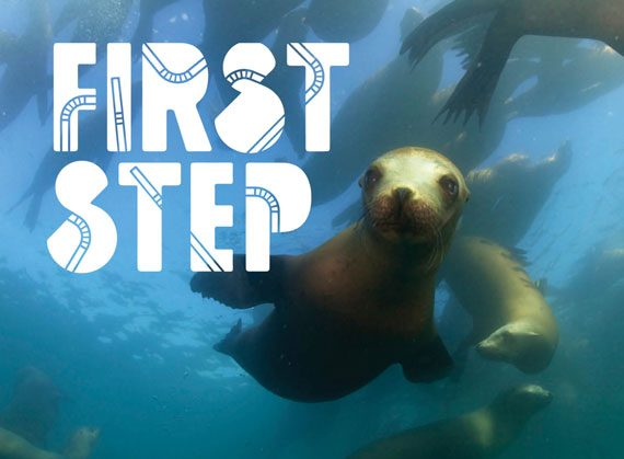 the first step logo with sea lion