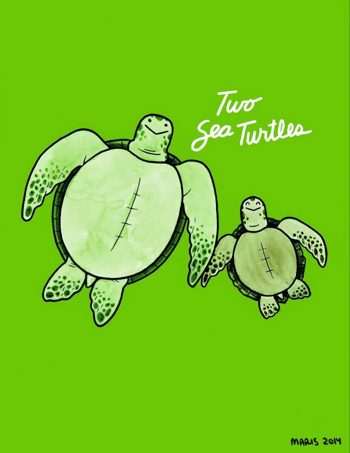 illustration of two sea turtles
