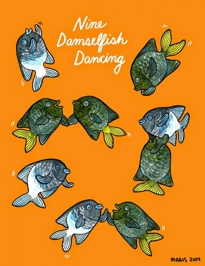 Illustration of 8 damselfish