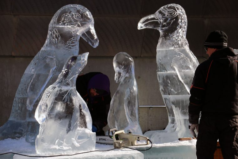 ice sculpture of penguin family