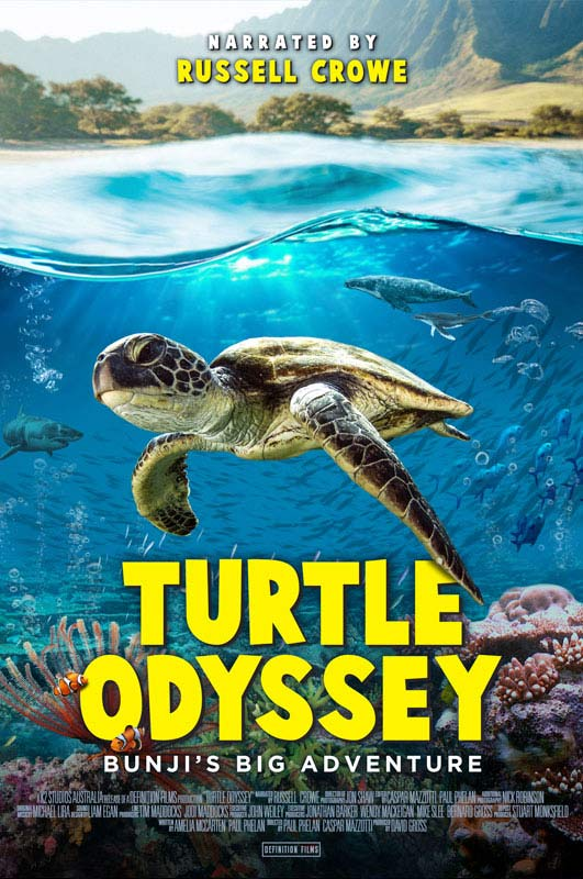 Turtle Odyssey film poster