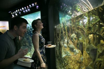 members of The Tide look at an exhibit.