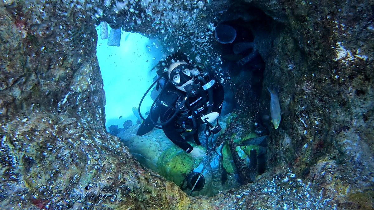 MCAF Fellow Anna Oposa diving in our Giant Ocean tank