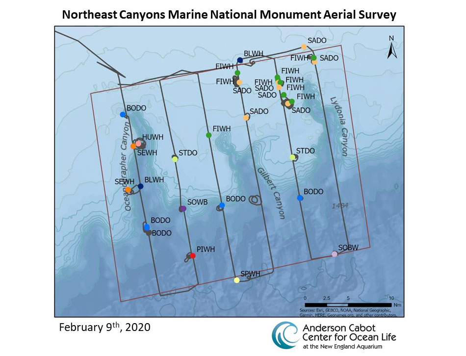 Northeast Canyons and Seamounts National Marine Monument Survey Map