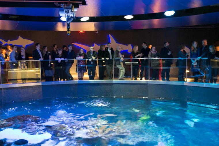people at the top of the Giant Ocean tank at