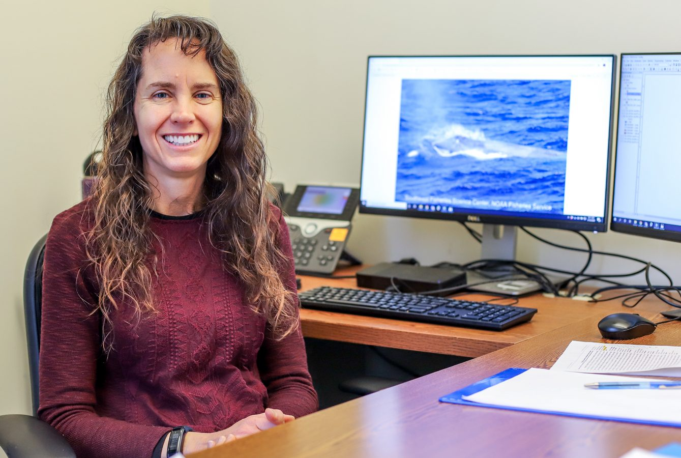 Dr. Jessica Redfern works at her desk at the Anderson Cabot Center for Ocean Life