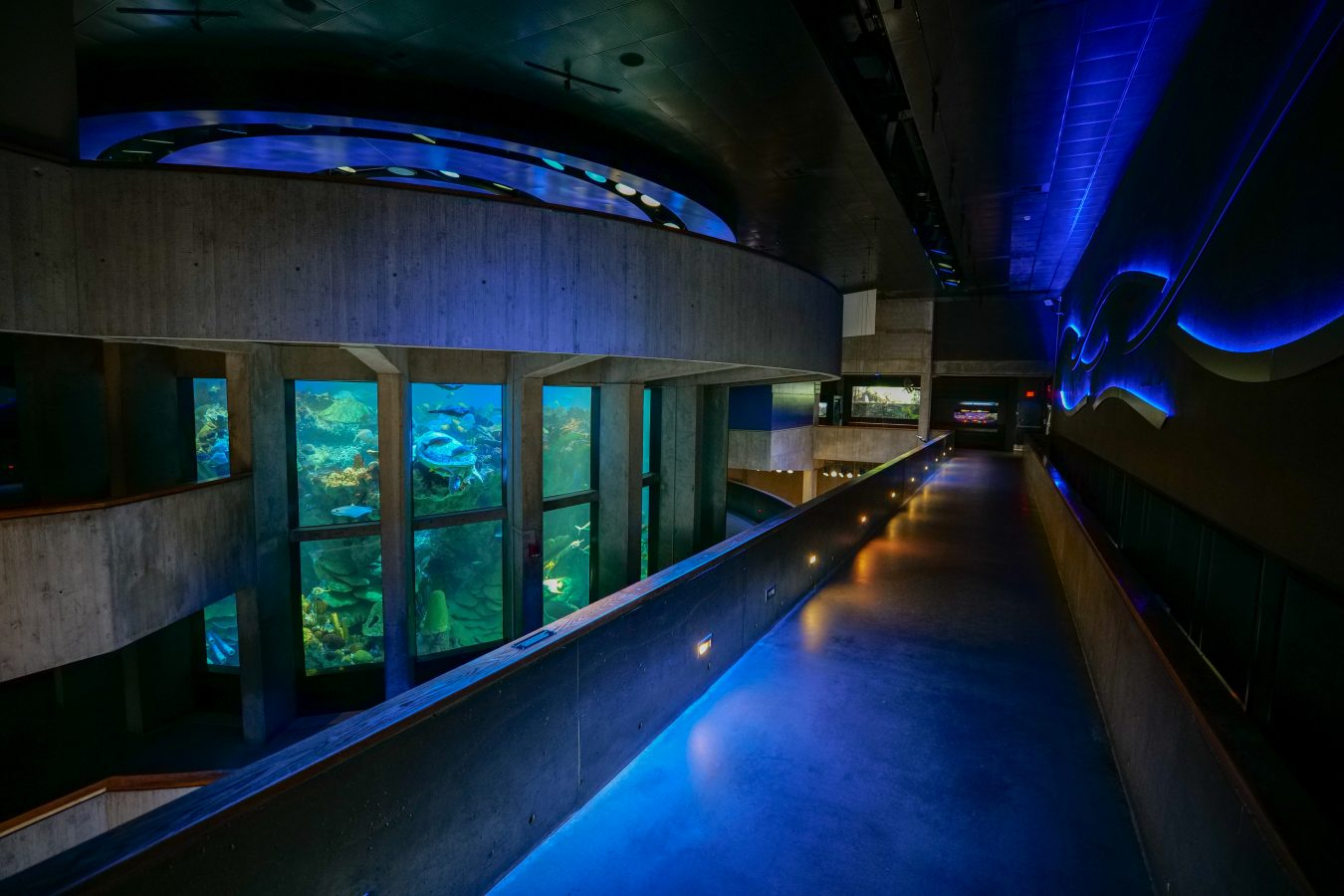 Interior view of giant ocean tank and pathway